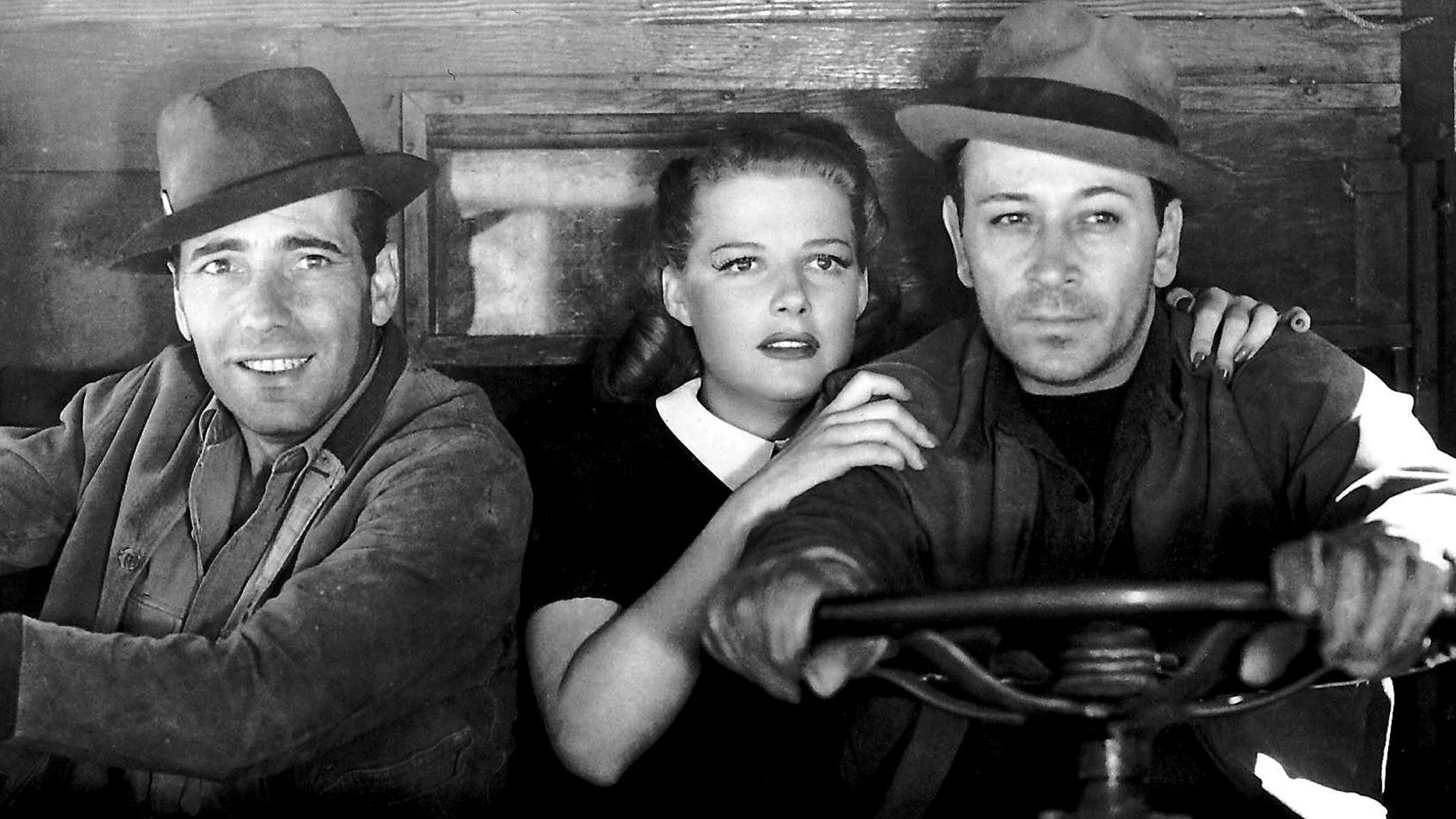 Image result for photos from they drive by night 1940