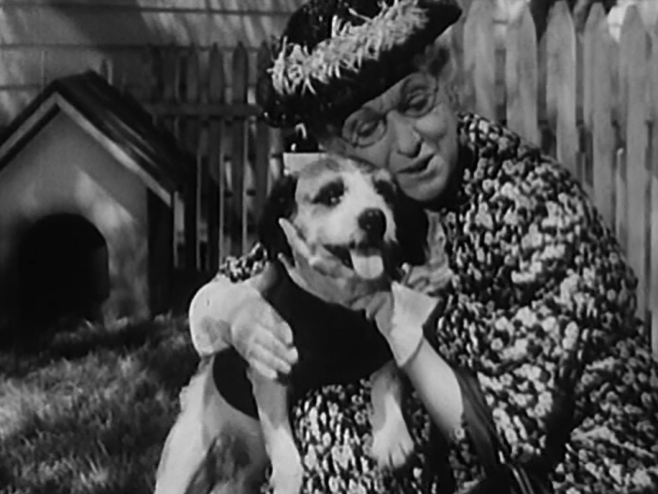 """Beulah Bondi as Mrs. Annie Reed, the oldest audience member at """"Breakfast in Hollywood"""" (WITH A REALLY CUTE PUPPY)"""