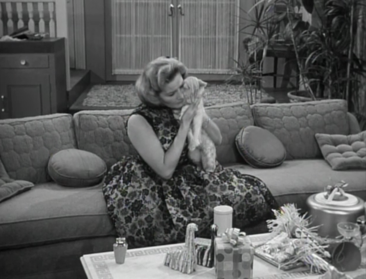 Let's take a moment to appreciate Sally's amazing party dress (and adorable cat)! (Screen capture by Lindsey for TMP)