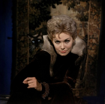 Kim Novak must have been born photogenic, to book a modeling gig at less than a year old! Here she is in a promotional shot for Bell, Book and Candle (Image via Doctor Macro)