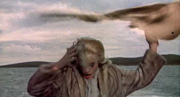 Tippi Hedren faces the wrath of a seagull at the bay in The Birds (Screen capture by Lindsey for TMP)