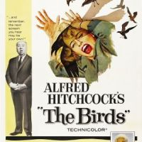 Book vs. Film: The Birds