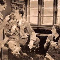 Petticoat Fever (1936)