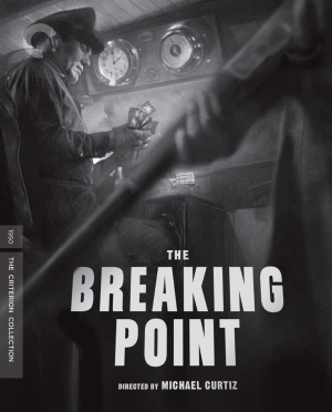 The Breaking Point Criterion cover